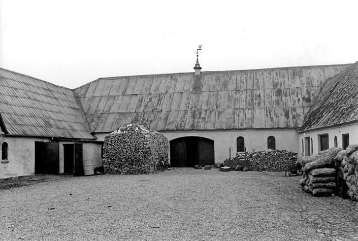 Paarup lokalhistoriske arkiv© - Skovsgård med træ