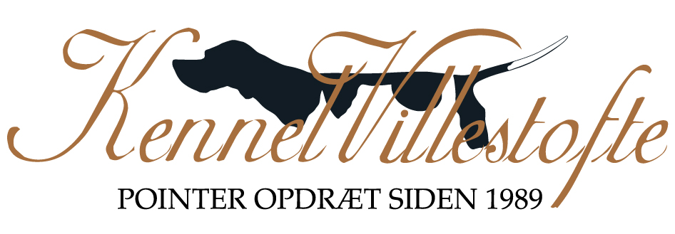 Kennel Villestofte